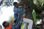 Localize Rotary Ethiopia