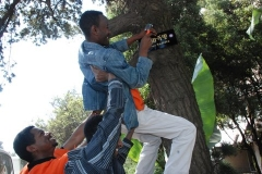 Rotarctors in Action: Naming Trees.